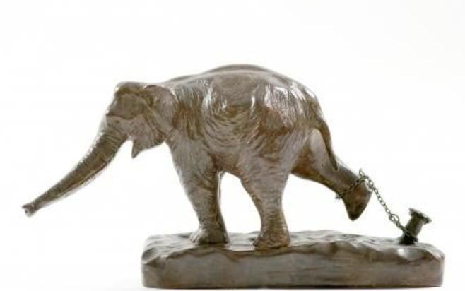 L'enseignement de l'éléphant